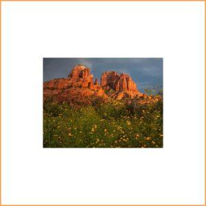Gift Certificate: 2-hour Sedona Photo Workshop